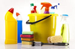 Attractive Regular House Cleaning in NW8